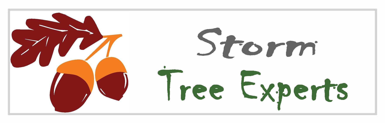 Certified arborist on staff